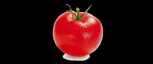 mevsimlik-dogal-kaliteli-urunler-domates
